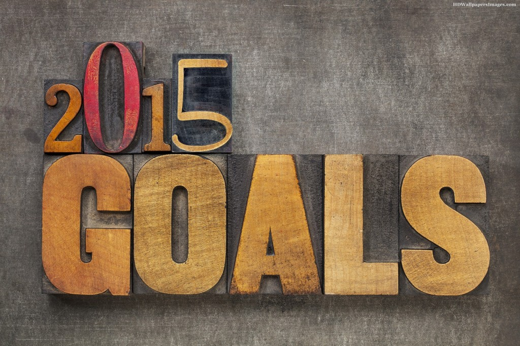 2015 Goals Can Be Achieved With Systems and Objectives-0